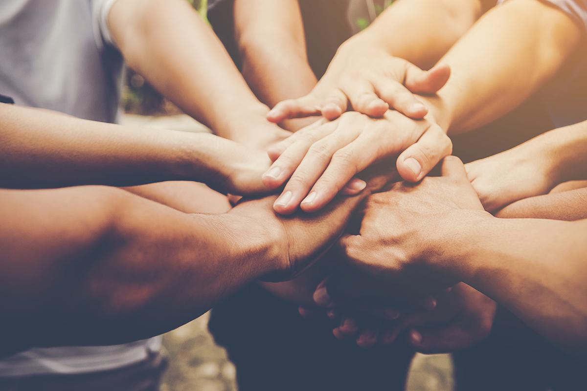 Parceria entre Rede Cruzada e APSIS: juntos para transformar
